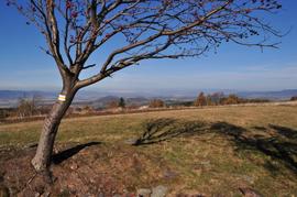 Na żółtym szlaku do Huty,  Góry Bystrzyckie