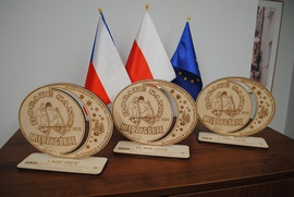 Międzynarodowy zjazd na saniach rogatych, Międzygórze 2020