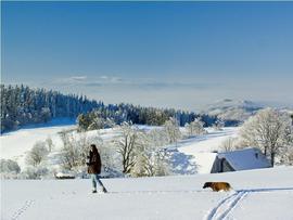 Zima w Masywie Śnieżnika