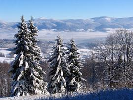 Widok na Masyw Śnieżnika