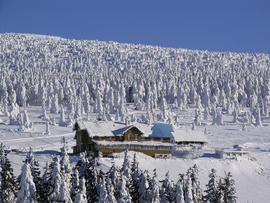 """Schronisko """"Na Śnieżniku"""", hala pod Śnieżnikiem"""